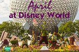 April at Disney World