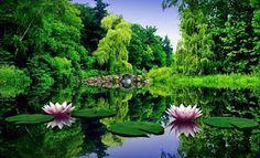 Ateu Racional e Livre Pensar: Você pode contar com a natureza (texto publicado e...