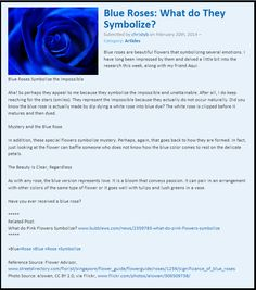 Blue Roses: What do They Symbolize? http://www.bubblews.com/news/2398870-blue-roses-what-do-they-symbolize By @christybis
