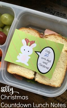 Adorable Christmas Countdown Lunchbox Notes