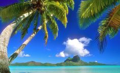 """""""Bora Bora."""" —@spiritedtravel  (Courtesy frogsaver/myBudgetTravel) From: 25 Perfect Spots for Getting Away From It All."""