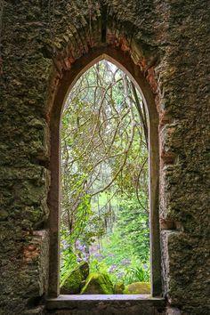 Scene from a castle window