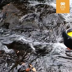 Camping Hacks Discover Waterlily Turbine Generates Electricity Using Water and Wind Power The lightweight and versatile WaterLily Turbine is the optimal water and wind turbine charger for any camper adventurer or hiker.
