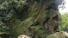 The Amarakarei face, a giant stone scurlpture in the middle of Peru's Amazon. Sometimes I Wonder, Ancient Mysteries, Environment Concept, Adventure, Amazon, Water, Outdoor, Image, Jungles