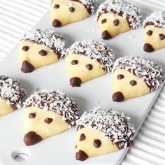 Biscuit cake «Hedgehogs»
