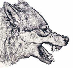 Resultado de imagen para lobo enojado dibujo