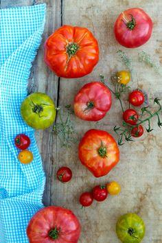 Tomates anciennes  La Tartine Gourmande