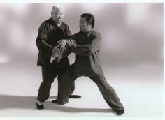 Fu Zhongwen Houilles Aramis Tai chi chuan Taichichuan