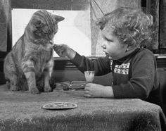Dutch billiards prodigy Renske Quax feeding cream to his cat.