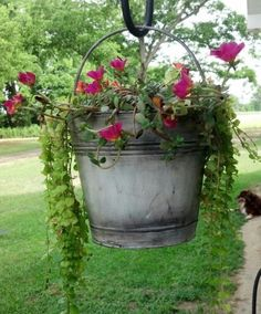 Antique bucket with flowers