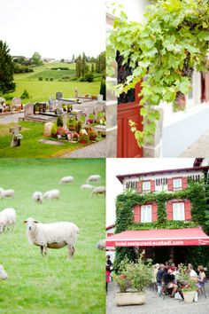 French Basque Country. Beautiful pictures from the lovely blog cannelle et vanille.