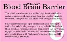 Young Living Essential Oils and the Blood Brain Barrier Therapeutic Grade Essential Oils, Doterra Oils, Doterra Essential Oils, Essential Oil Blends, Yl Oils, Doterra Shop, Healing Oils, Aromatherapy Oils, Young Living Oils