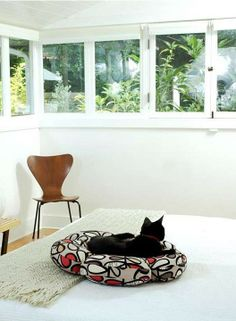 There's so much for you and your pet to love about our Bloom Pet Bed.