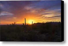 In The Shadow Of The Saguaro  Stretched Canvas Print / Canvas Art By Saija  Lehtonen #sunset #cactussunset #desert #southwest #Arizona #landscape #saguarocactus
