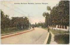 Mozambique - Maputo (ancienne Lourenço Marques) - Avenida Marianno machado