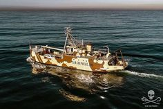 Sea Shepherd UK - Sea Shepherd Worldwide Fleet West Coast Australia, Fleet Of Ships, Cocos Island, Sea Shepherd, Us Coast Guard, Navy Ships, Pearl Harbor, Brigitte Bardot, Us Travel