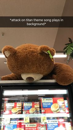 Attack on titan(kinda)~ the bear titan appears to be climbing over wall biscuit at Safeway!!! :00