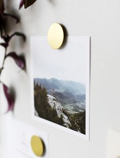 I'm not usually one to cover my fridge with papers buuut we have little piles of notes and save-the-dates that have piled up as well as some pretty grocery lists, calendars, and pictures that…