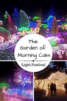 The Garden of Morning calm, a romantic winter activity in South Korea.