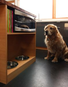 DIY solution for microwave storage AND dog bowl storage. Would go nicely in my house.