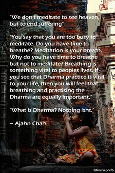 What is #Dharma? Nothing isn't - Ajahn Chah
