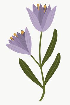 Art Floral, Floral Watercolor, Flower Vases, Flower Art, Art Deco Flowers, Illustration Blume, Digital Art Tutorial, Aesthetic Drawing, Ipad Art