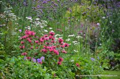 Mon Jardin Mes Merveilles