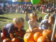 Ashfield Fall Festival - one weekend in October, but good if it's the weekend you have guests.