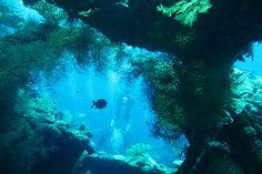 The USS Liberty ship wreck dive site at Tulamben, Bali...