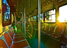 Oh How I love the Disney Buses- Tom Bricker Photo