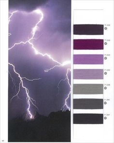 Colours - Trend Forecasts