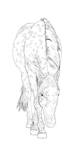More of my art>>Appaloosa horse line art by StormsDestiny.deviantart.com on @deviantART