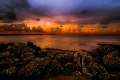 Ocean Palette by Rolando Felizola on 500px