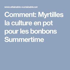 Comment: Myrtilles la culture en pot pour les bonbons Summertime