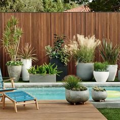 If you are working with the best backyard pool landscaping ideas there are lot of choices. You need to look into your budget for backyard landscaping ideas Outdoor Planters, Garden Planters, Outdoor Gardens, Indoor Outdoor, Outdoor Potted Plants, Stone Planters, Garden Bed, Balcony Garden, Hanging Plants On Fence