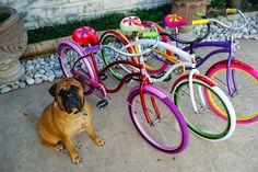 Villys Custom Bikes - Just learned about them on Shark Tank.  Love the colors!