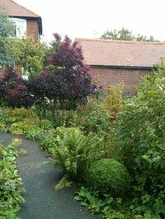 The front garden in August