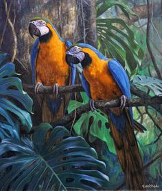 Treasures Of The Rainforest Canvas Print Canvas Art by Gabriel Hermida : Treasures Of The Rainforest Canvas Print by Gabriel Hermida. All canvas prints are professionally printed, assembled, and shipped within 3 4 business days and delivered ready to h Tropical Art, Tropical Birds, Exotic Birds, Colorful Birds, Parrot Painting, Sun Painting, Canvas Art, Canvas Prints, Wildlife Art