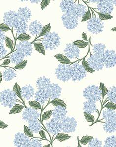Hydrangea, Blue & White RI5143 - Sample