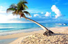 23 fotografías de las Islas Maldivas; Playas, Agua Turquesa, Palmeras, Arena Blanca, Turismo y Vacaciones.   Banco de Imagenes (shared via SlingPic)