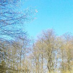 @bunter_wegs   Bestes #Wetter um für #bunterwegs2nepal & das #bloggerwandern zu trainieren ♥ http://ift.tt/1HTZ9Fy  Eingebetteter Bild-Link