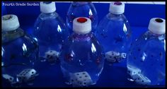 dice in water bottles