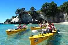 Go Kayaking in Los Haitises National Park with a Guide or By your self. Book with Locals Guides from Cano Hondo area & Visit Mangroves, Birds plus History with locals from Sabana de la mar or Samana, Dominican Republic. New Zealand Tours, New Zealand North, New Zealand Travel, Samana, Kayak Camping, Van Camping, Kayaks, New Zealand Accommodation, Rotorua New Zealand