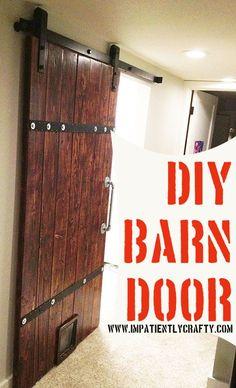 Barn door with cat door diy
