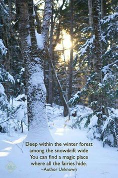 Fairies in the snowdrift Quote forest Fairy Quotes - Fairy Gardening Snow Quotes, Winter Quotes, Quotes About Snow, Quotes About Winter, Winter Solstice Quotes, Best Friend Poems, All Nature, Nature Quotes, Fairy Quotes
