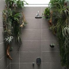 zen Bathroom Decor - If youre like most of us, the most difficult rooms in the house to decorate nicely seems to be the bathroom. This is especially true when you have a .