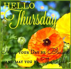 Hello Thursday May Your Day Be Blessed good morning thursday thursday quotes…
