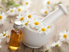 Reduce Water Retention How to Make Chamomile Essential Oil at Home. Chamomile oil is one of the most widely used oils in aromatherapy, and is perfect for reducing stress and anxiety as well as for treating. Foot Remedies, Herbal Remedies, Natural Remedies, Rosacea Remedies, Asthma Remedies, Chamomile Oil, Chamomile Essential Oil, Roman Chamomile, Calendula Oil