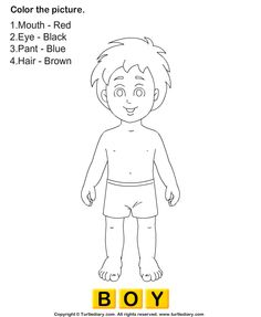 Coloring Page Human Body