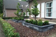 Voortuin met bakken en grind Garden Care, Cinder Block Garden, Haus Am See, Backyard Pool Designs, Gravel Garden, Small Garden Design, Front Yard Landscaping, Outdoor Projects, Garden Inspiration